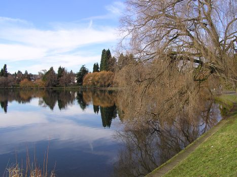 Greenlake in winter