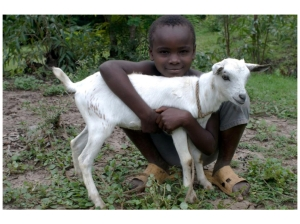 Child with goat - photo by Harvey Wang of Episcopal Relief and Development
