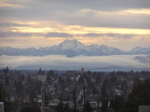 Snow covered Olympic mountains