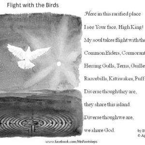 Bonnie Harr - Flight with the Birds