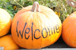 Pumpkin welcome