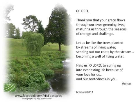 Lord Thank you for your grace