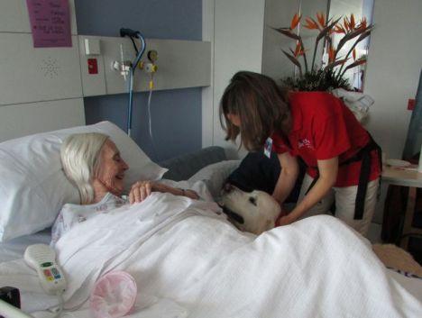 Mum with service dog