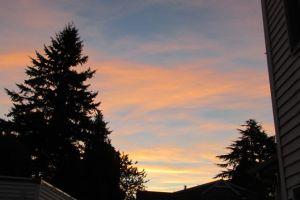 God awakens the dawn